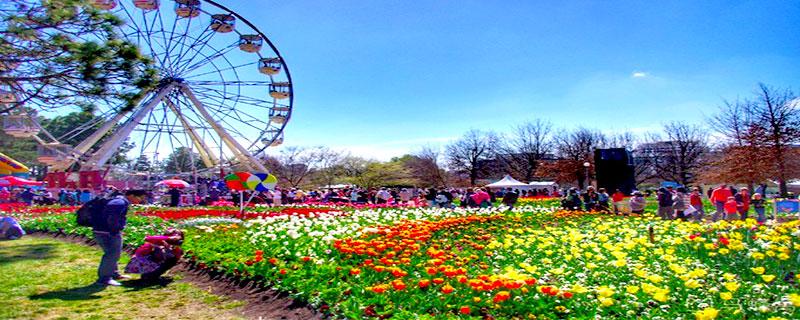 Những địa điểm du lịch nổi tiếng ở Canberra